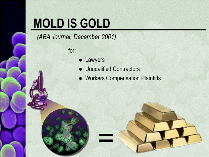 MOLD IS GOLD