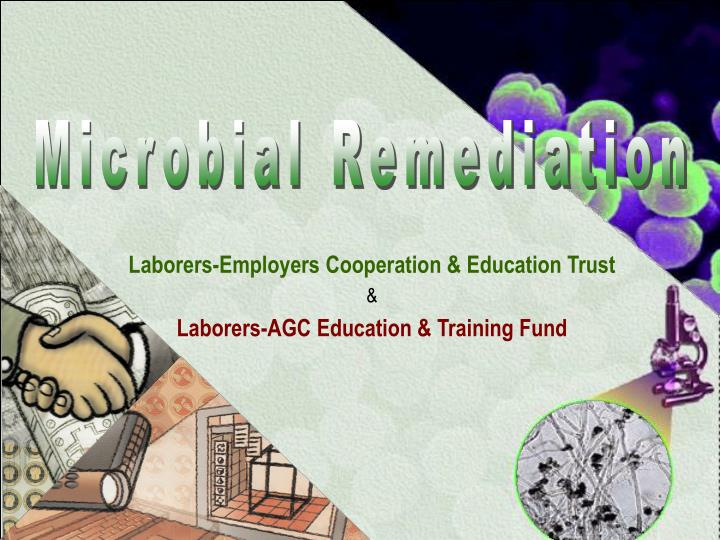 Microbial Remediation