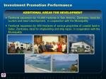 investment promotion performance3