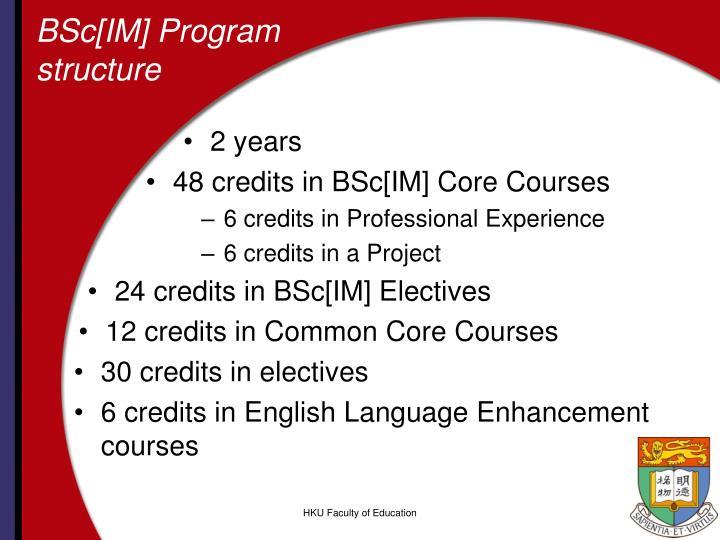 BSc[IM] Program structure