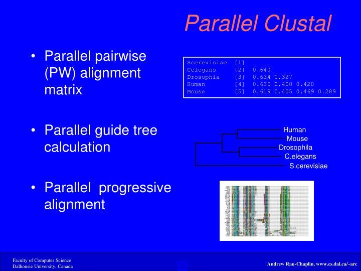 Parallel pairwise (PW) alignment matrix
