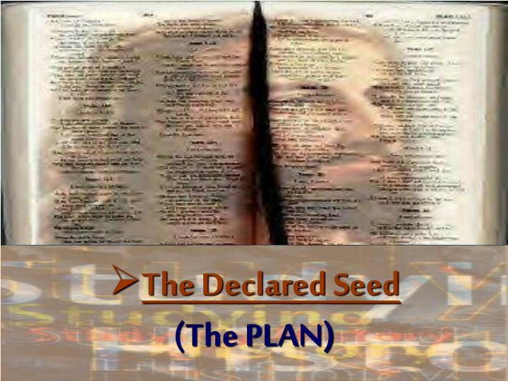 The Declared Seed