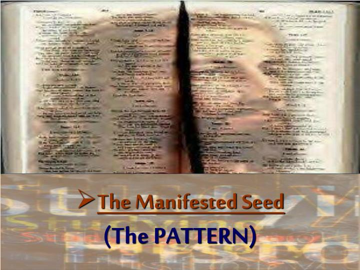 The Manifested Seed