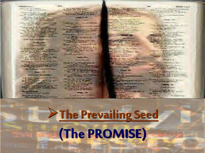 The Prevailing Seed