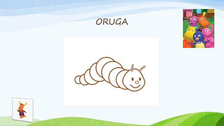 ORUGA