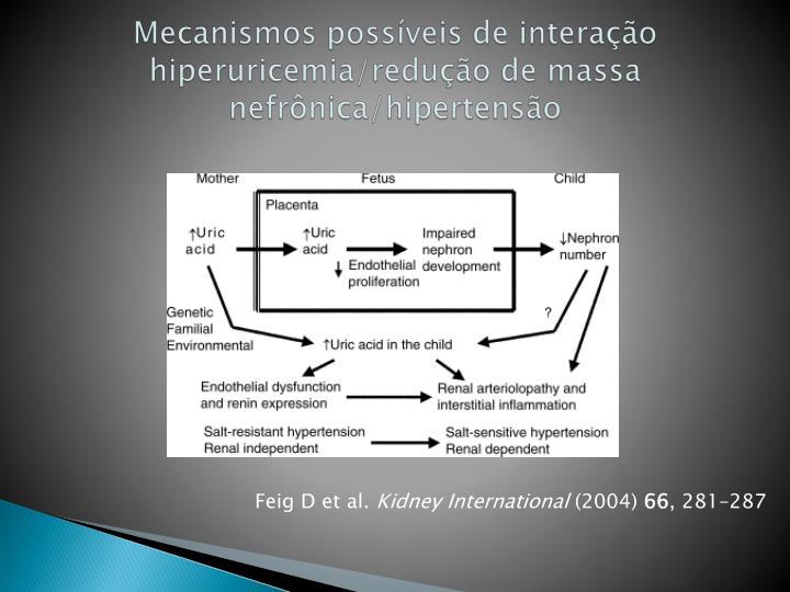 Mecanismos possíveis de interação