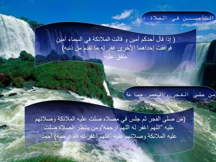 التأميــن في الصلاة :