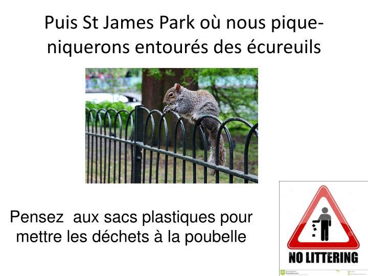 Puis St James Park où nous pique-niquerons entourés des écureuils