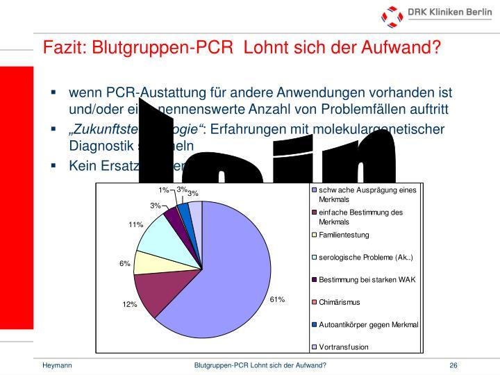 Fazit: Blutgruppen-PCR  Lohnt sich der Aufwand?