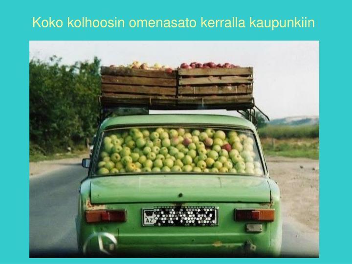 Koko kolhoosin omenasato kerralla kaupunkiin