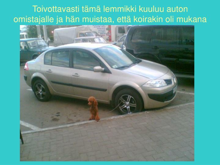 Toivottavasti tämä lemmikki kuuluu auton omistajalle ja hän muistaa, että koirakin oli mukana
