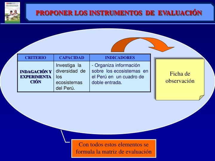 PROPONER LOS INSTRUMENTOS  DE  EVALUACIÓN