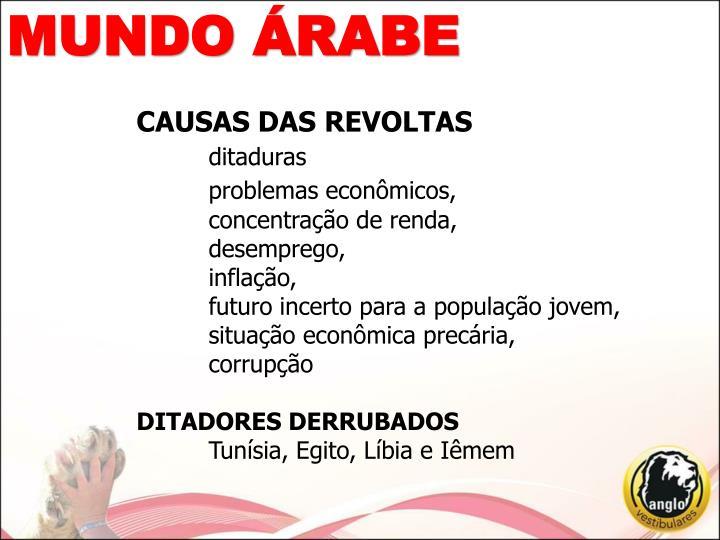 CAUSAS DAS REVOLTAS