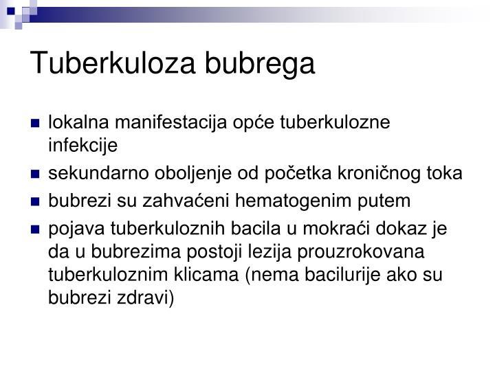 Tuberkuloza bubrega