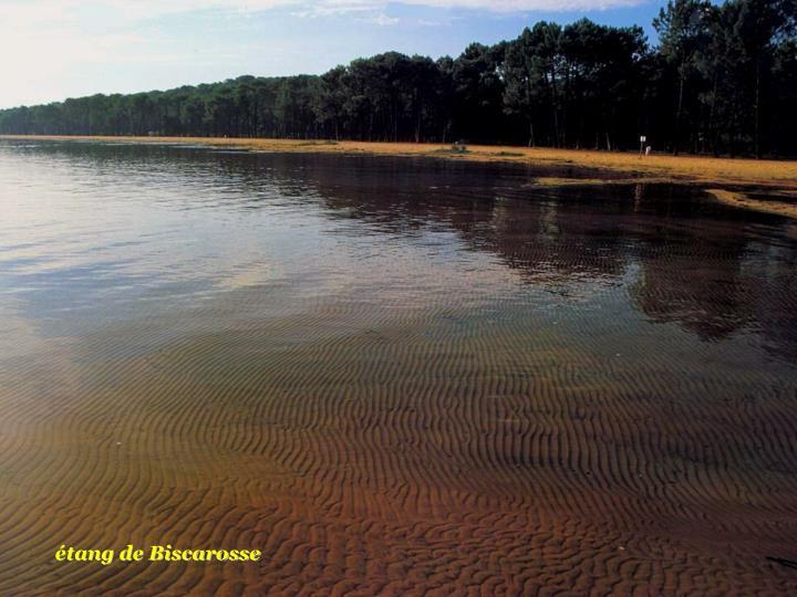étang de Biscarosse