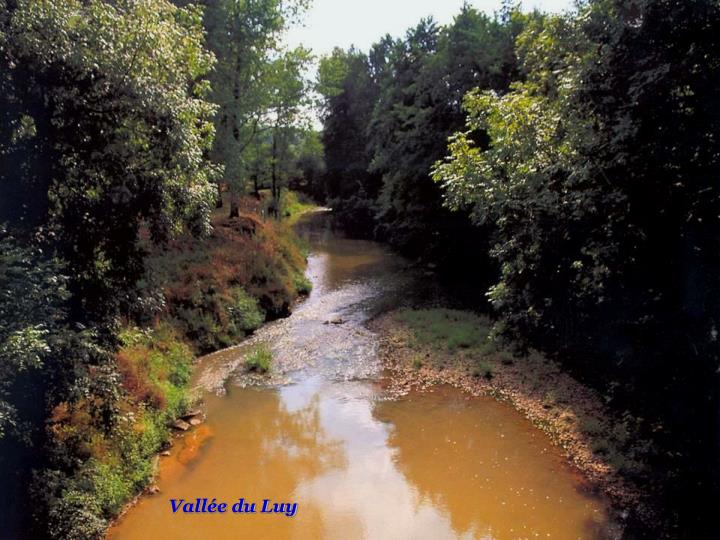 Vallée du Luy