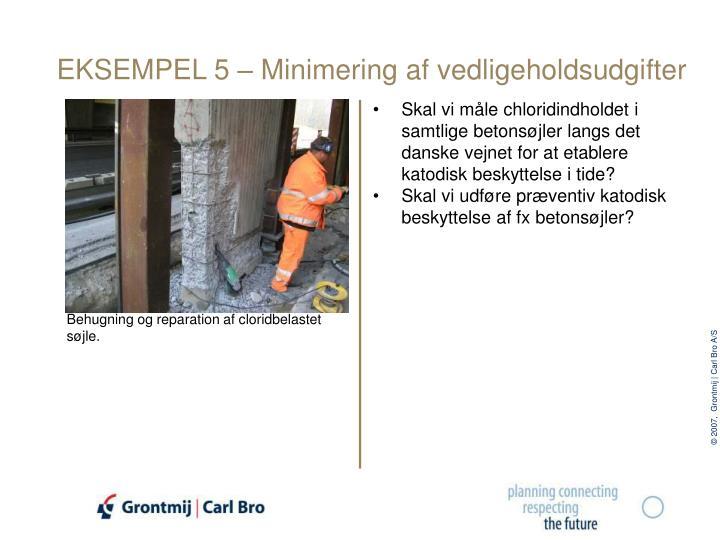 EKSEMPEL 5 – Minimering af vedligeholdsudgifter