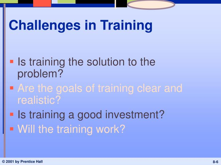 Challenges in Training