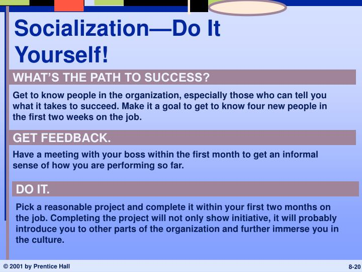 Socialization—Do It Yourself!