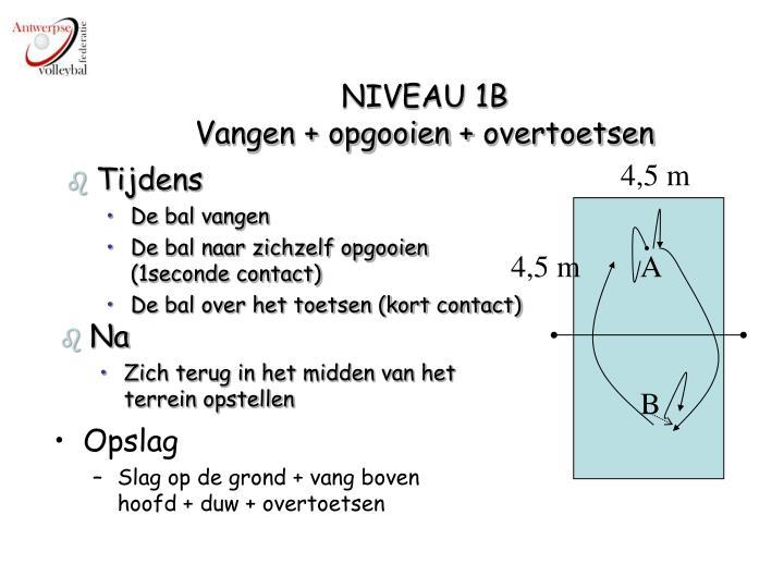 NIVEAU 1B
