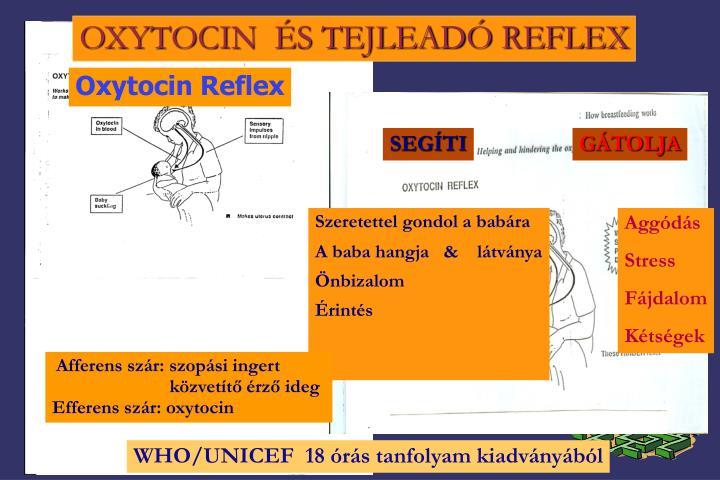 OXYTOCIN  ÉS TEJLEADÓ REFLEX