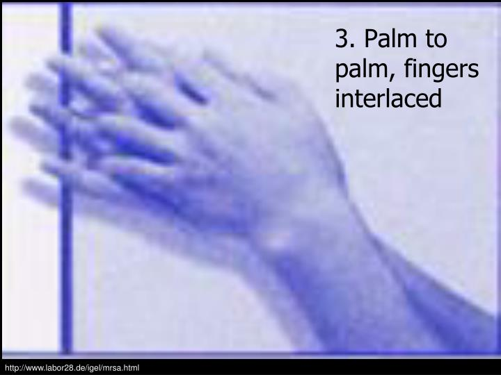 3. Palm to palm, fingers interlaced