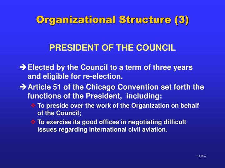 Organizational Structure (3)