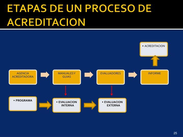 ETAPAS DE UN PROCESO DE ACREDITACION