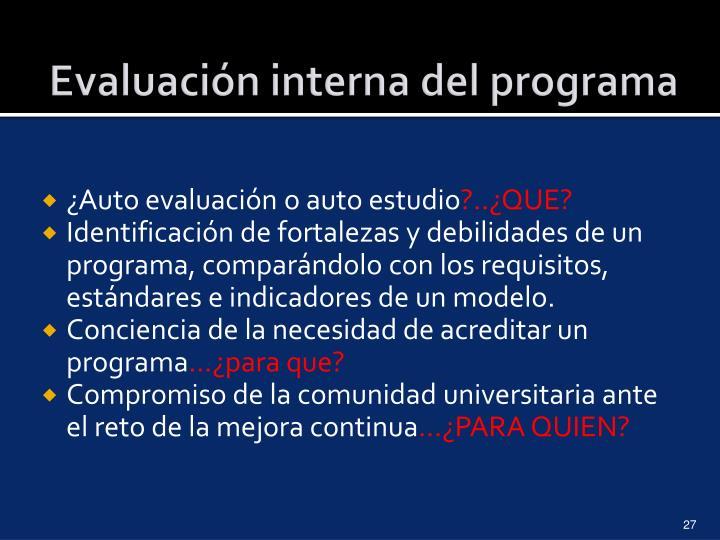Evaluación interna del programa