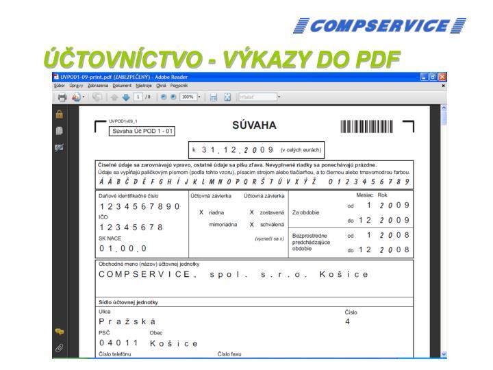 ÚČTOVNÍCTVO - VÝKAZY DO PDF
