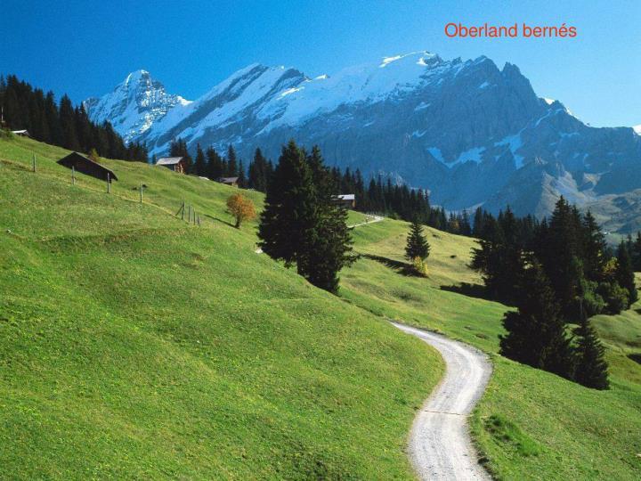 Oberland bernés