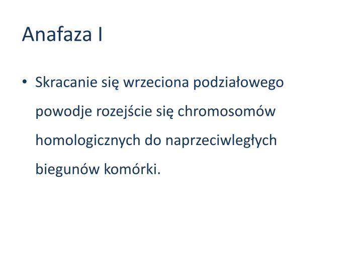 Anafaza I
