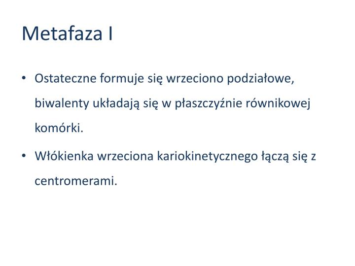 Metafaza I