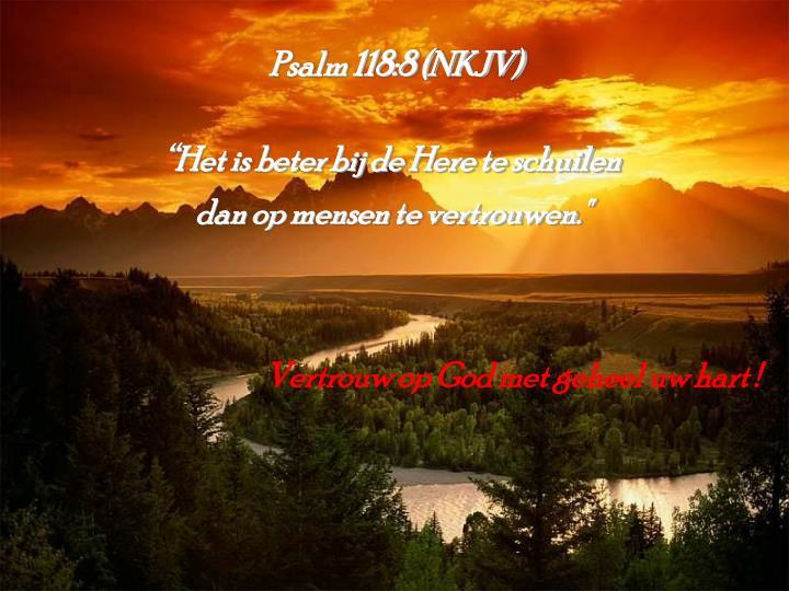 Psalm 118:8 (NKJV)