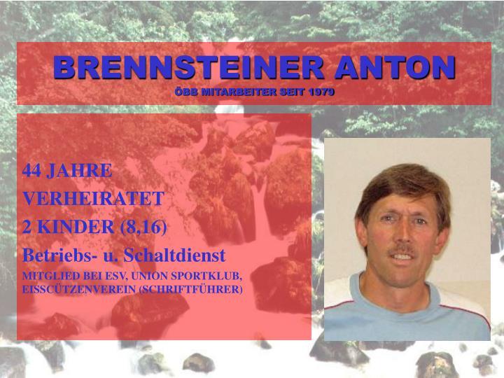 BRENNSTEINER ANTON