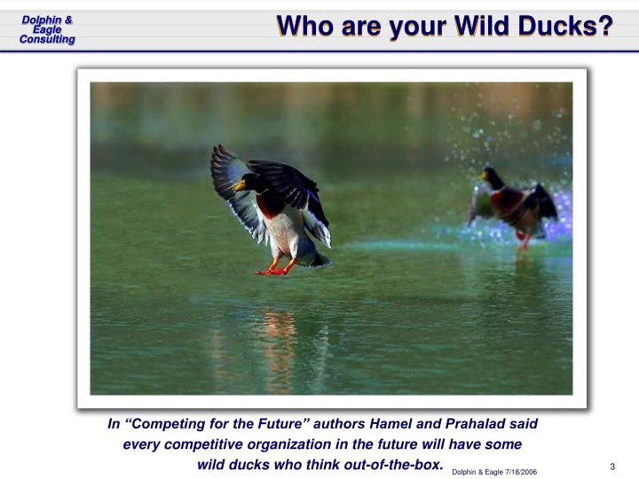 Who are your wild ducks