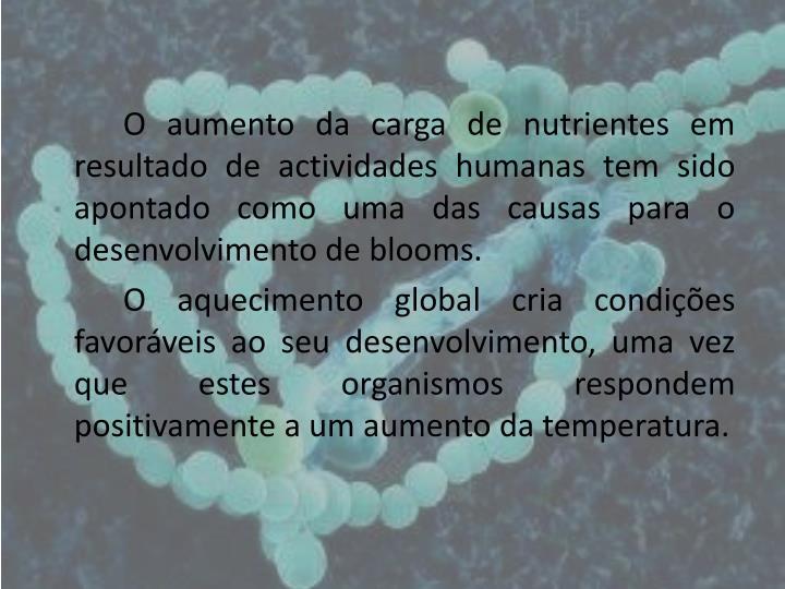 O aumento da carga de nutrientes em resultado de actividades humanas tem sido apontado como uma das causas para o desenvolvimento de