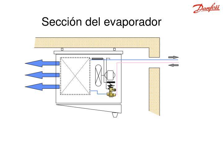 Sección del evaporador