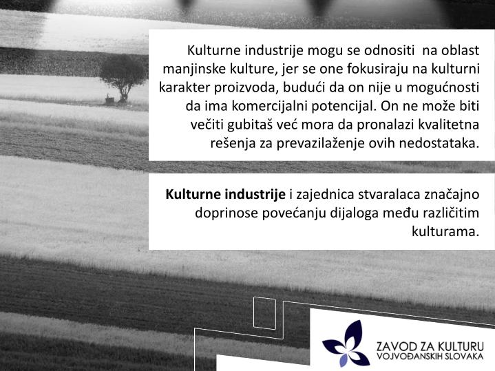 Kulturne industrije mogu se odnositi  na oblast manjinske kulture, jer se one fokusiraju na kulturni karakter proizvoda, budući da on nije u mogućnosti da ima komercijalni potencijal. On ne može biti večiti gubitaš već mora da pronalazi kvalitetna rešenja za prevazilaženje ovih nedostataka.