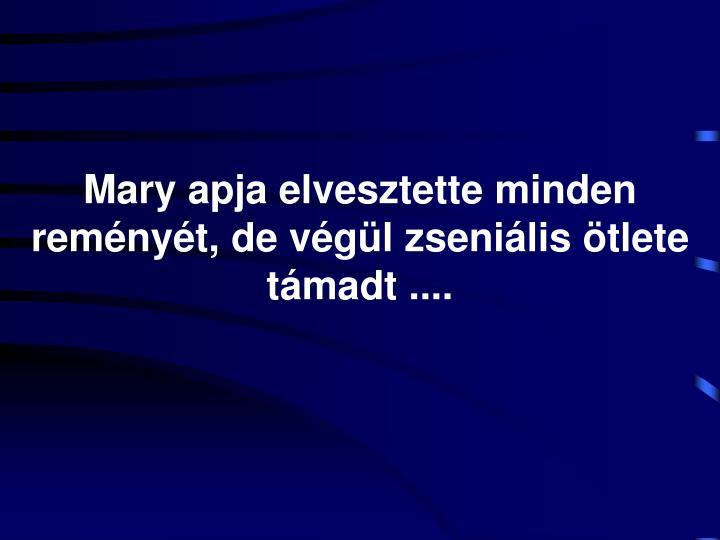 Mary apja elvesztette minden reményét, de végül zseniális ötlete támadt ....