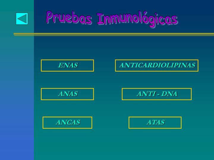 Pruebas Inmunológicas