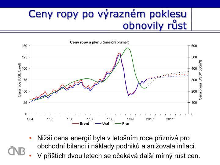 Ceny ropy po výrazném poklesu obnovily růst