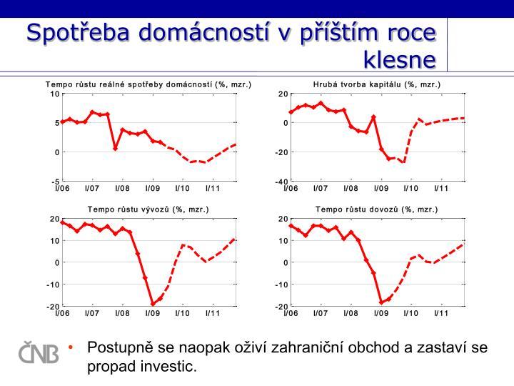 Spotřeba domácností v příštím roce klesne