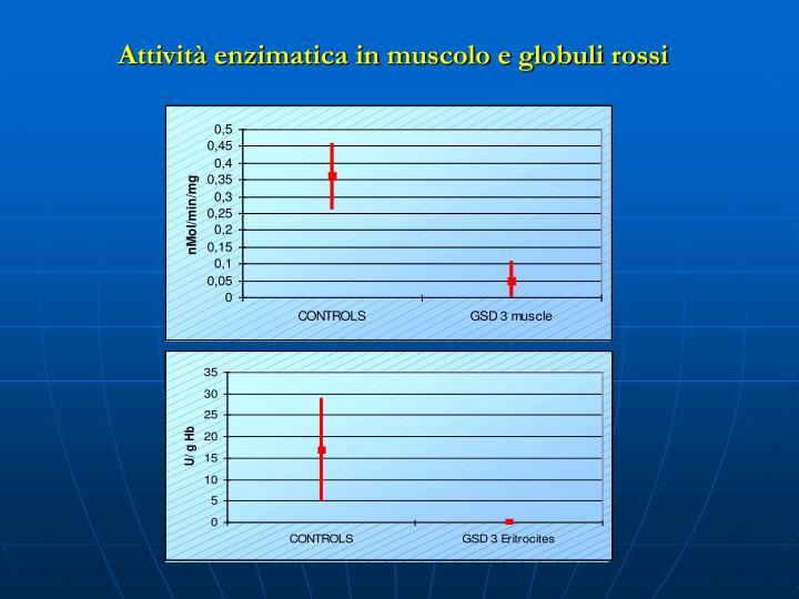 Attività enzimatica in muscolo e globuli rossi