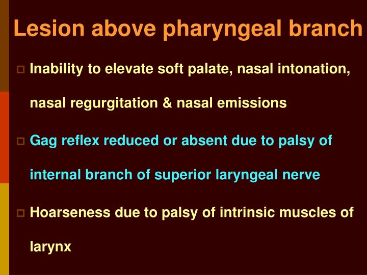 Lesion above pharyngeal branch