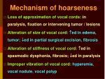 mechanism of hoarseness
