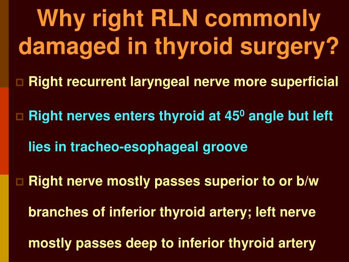Why right RLN commonly damaged in thyroid surgery?