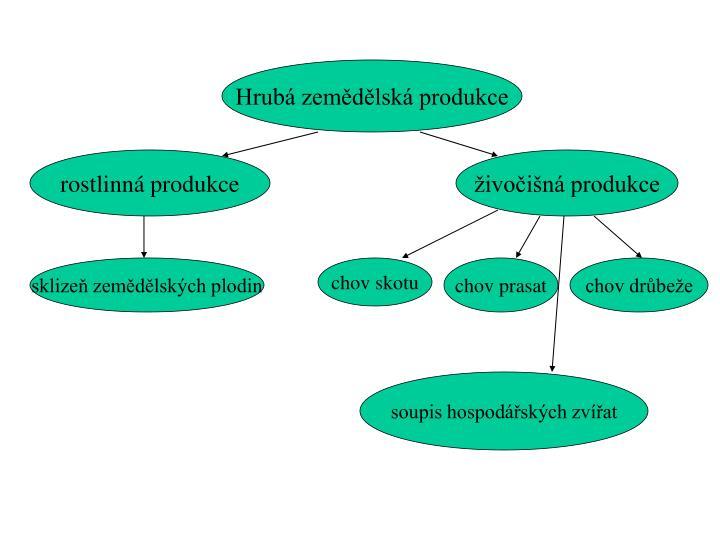 Hrubá zemědělská produkce