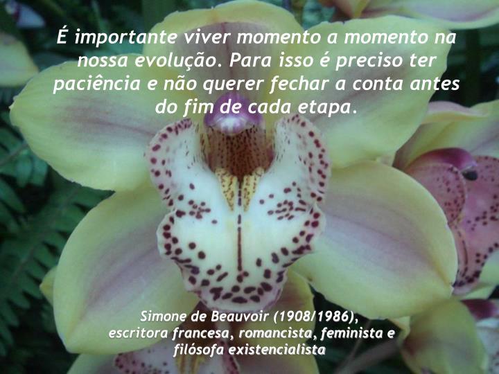 É importante viver momento a momento na nossa evolução. Para isso é preciso ter paciência e não querer fechar a conta antes do fim de cada etapa.