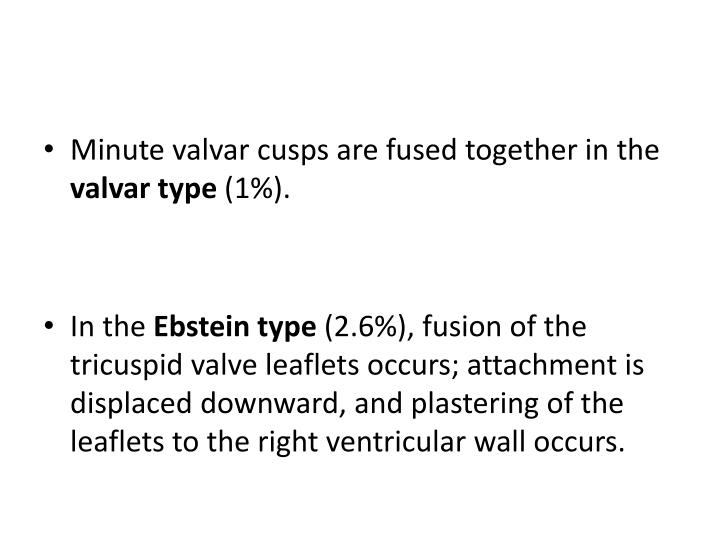 Minute valvar cusps are fused together in the